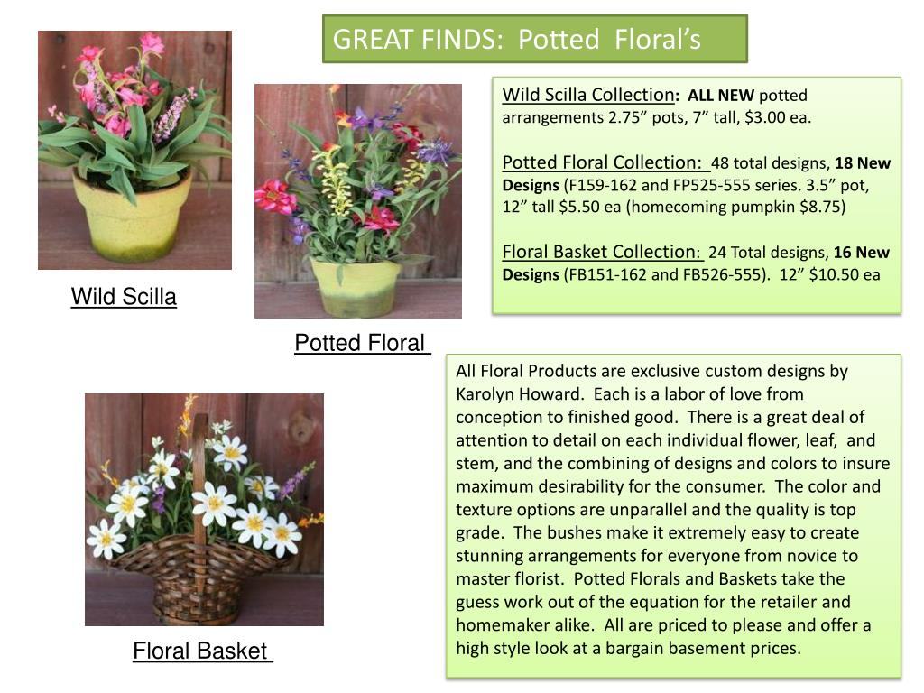 GREAT FINDS:  Potted  Floral's