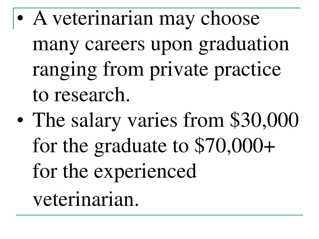 A veterinarian may choose many careers upon graduation ranging from private practice to research.