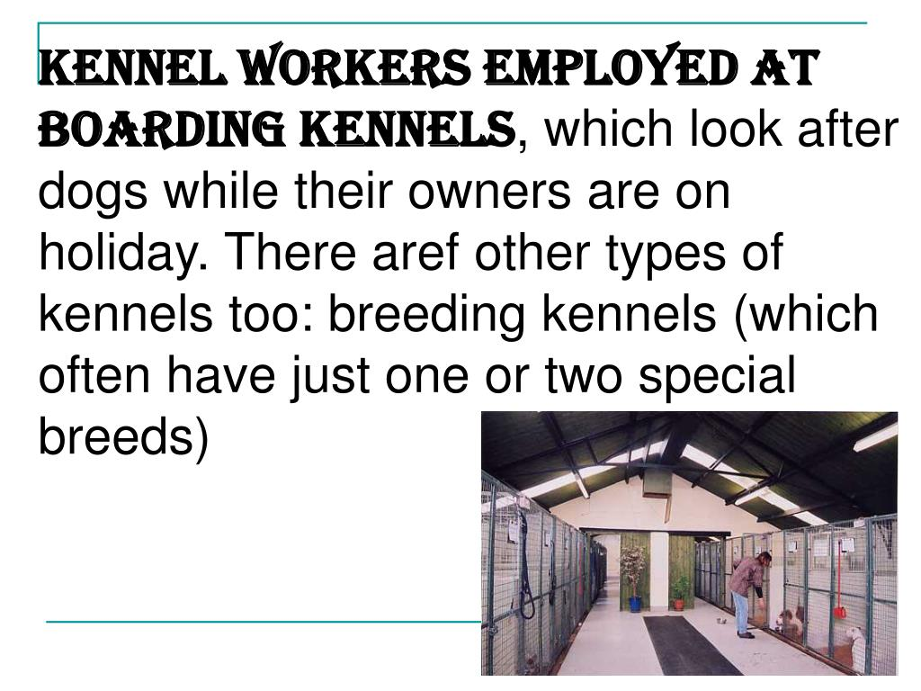 KENNEL WORKERS employed at boarding kennels
