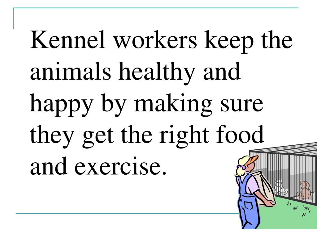 Kennel workers keep the animals healthy and happy by making sure they get the right food and exercise.