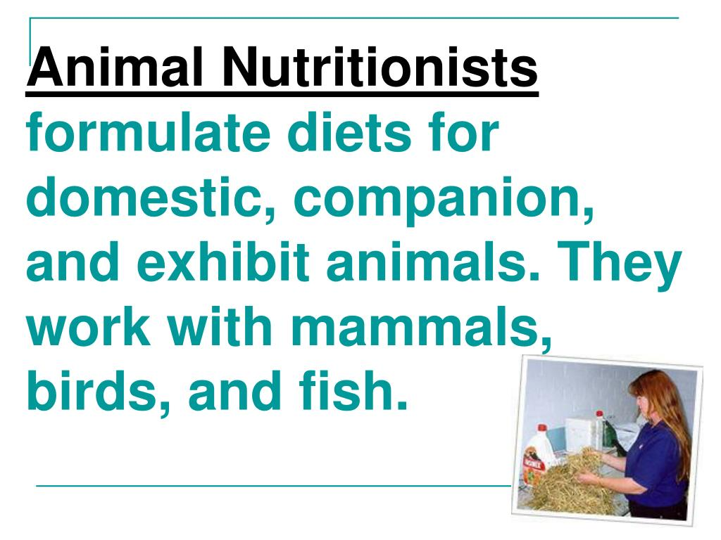 Animal Nutritionists