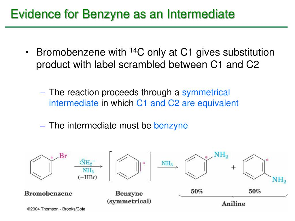 Evidence for Benzyne as an Intermediate