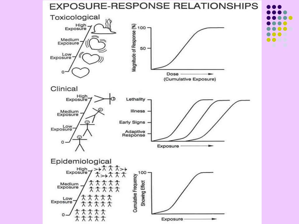Toxicodynamics