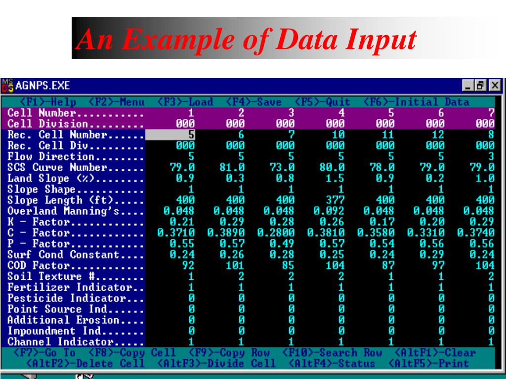 An Example of Data Input
