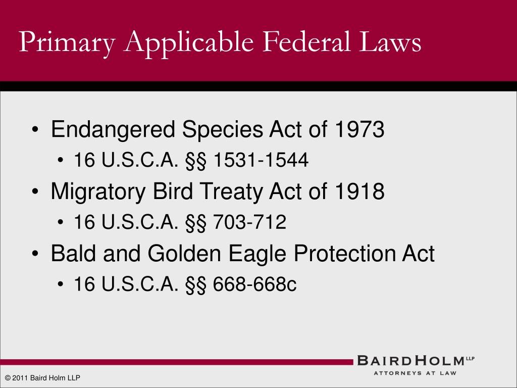 Primary Applicable Federal Laws