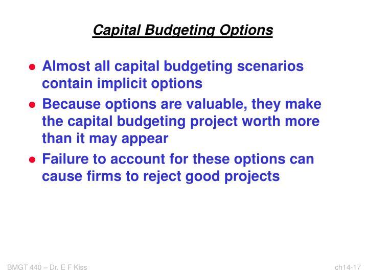 Capital Budgeting Options