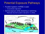 potential exposure pathways