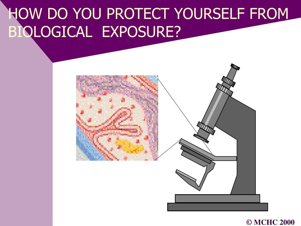 HOW DO YOU PROTECT YOURSELF FROM BIOLOGICAL  EXPOSURE?