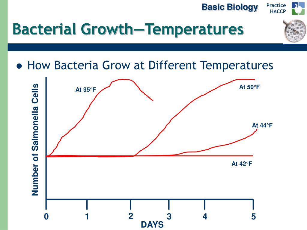 Basic Biology
