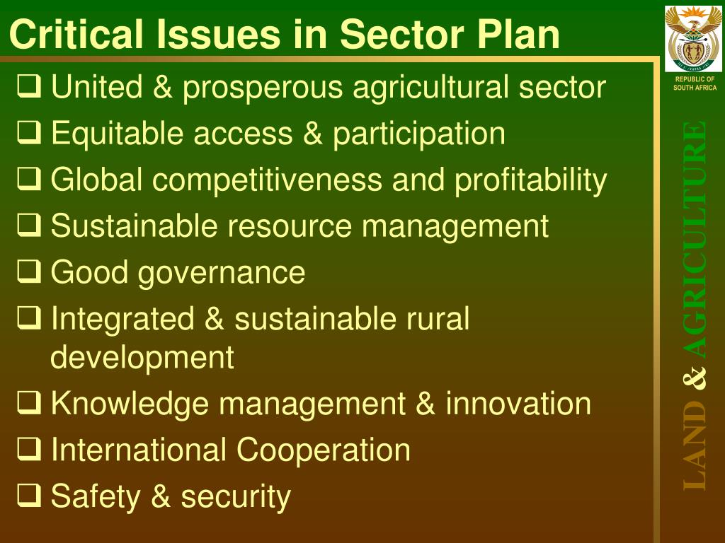 Critical Issues in Sector Plan