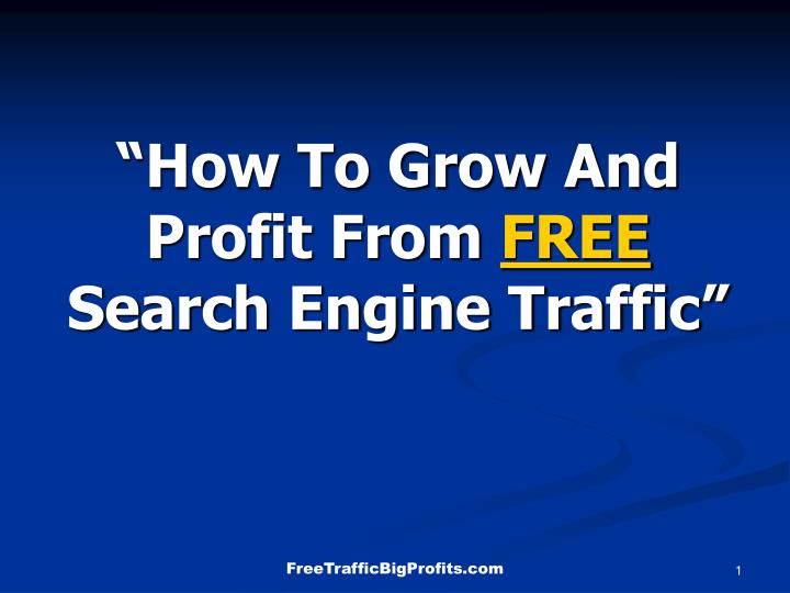 How to grow and profit from free search engine traffic