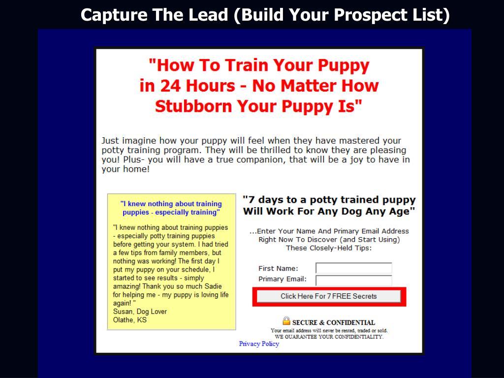 Capture The Lead (Build Your Prospect List)