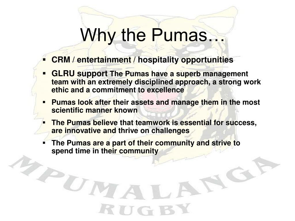 Why the Pumas…