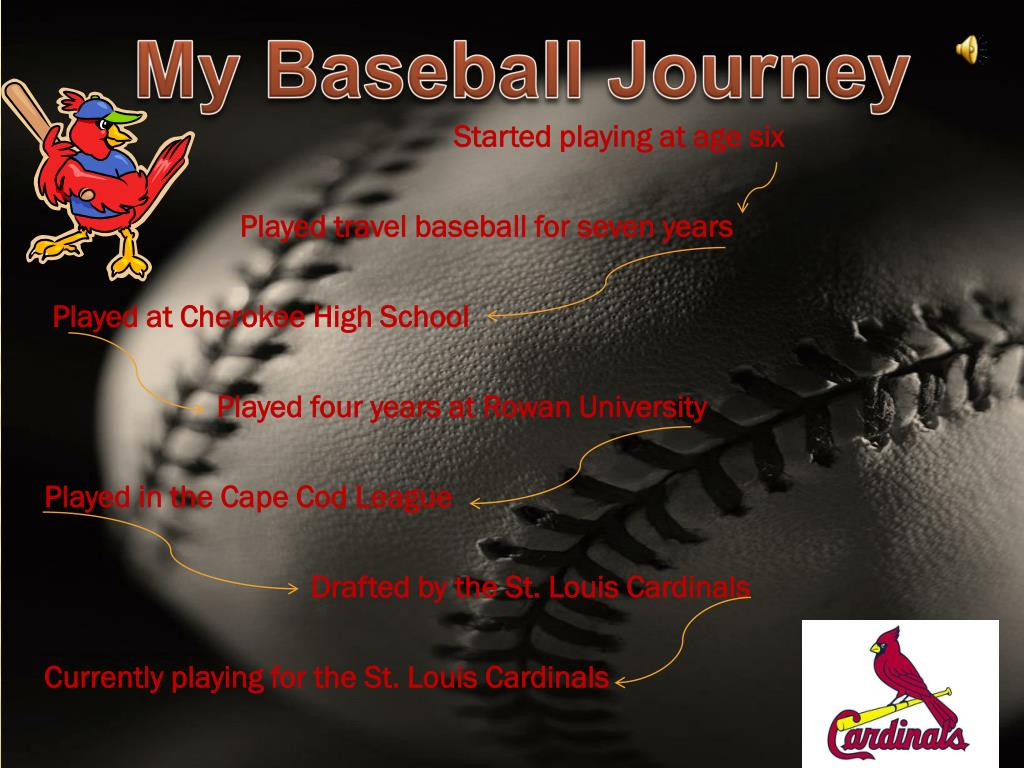 My Baseball Journey