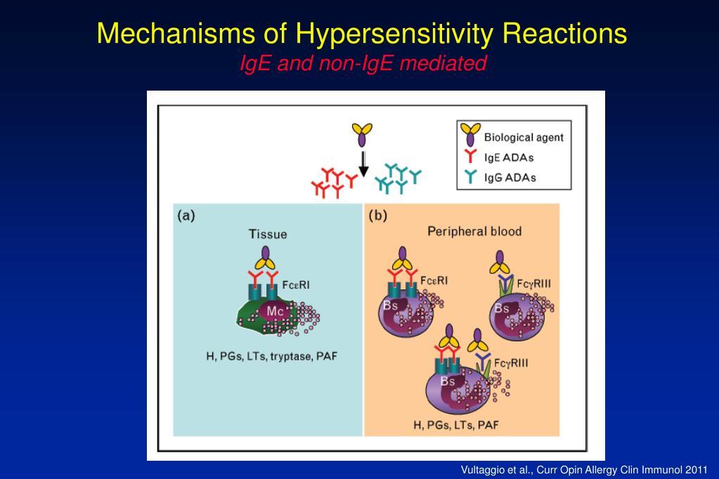 Mechanisms of Hypersensitivity Reactions