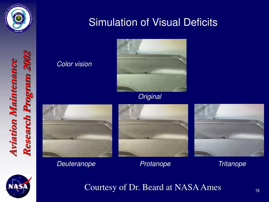 Simulation of Visual Deficits
