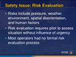 safety issue risk evaluation