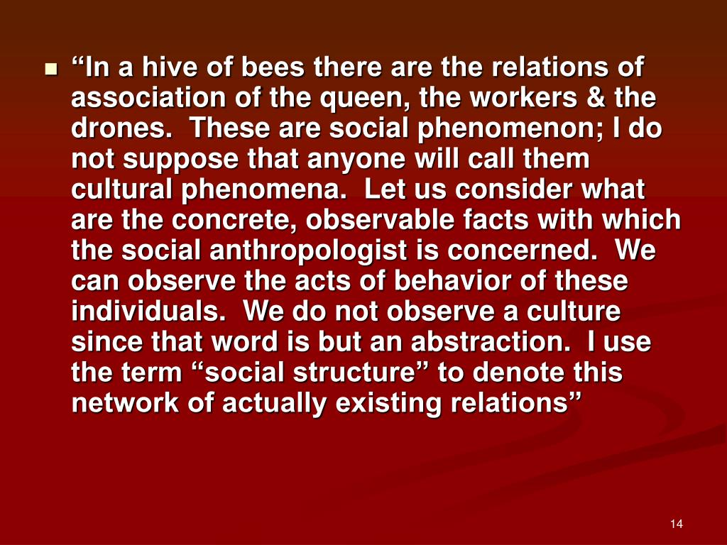 """In a hive of bees there are the relations of association of the queen, the workers & the drones.  These are social phenomenon; I do not suppose that anyone will call them cultural phenomena.  Let us consider what are the concrete, observable facts with which the social anthropologist is concerned.  We can observe the acts of behavior of these individuals.  We do not observe a culture since that word is but an abstraction.  I use the term ""social structure"" to denote this network of actually existing relations"""