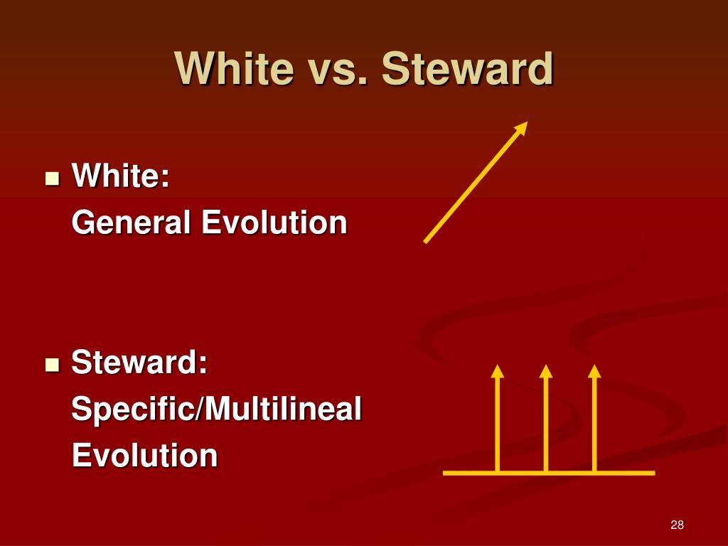 White vs. Steward