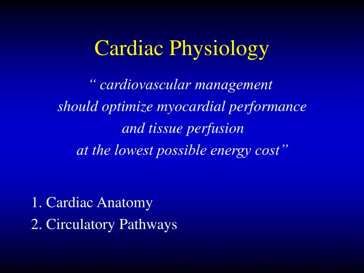 Cardiac physiology l.jpg