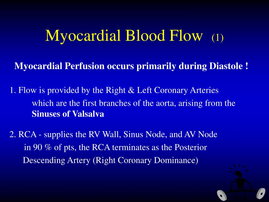 Myocardial Blood Flow
