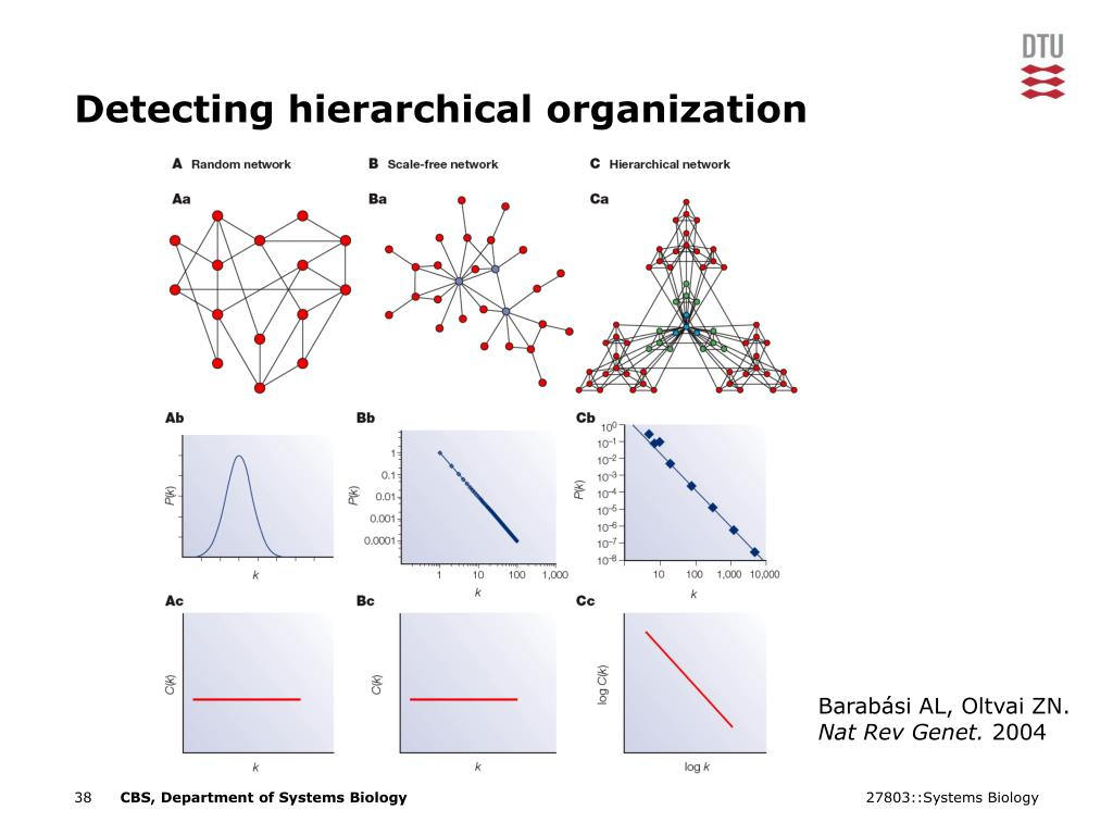 Detecting hierarchical organization