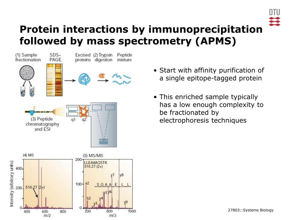 Protein interactions by immunoprecipitation followed by mass spectrometry (APMS)