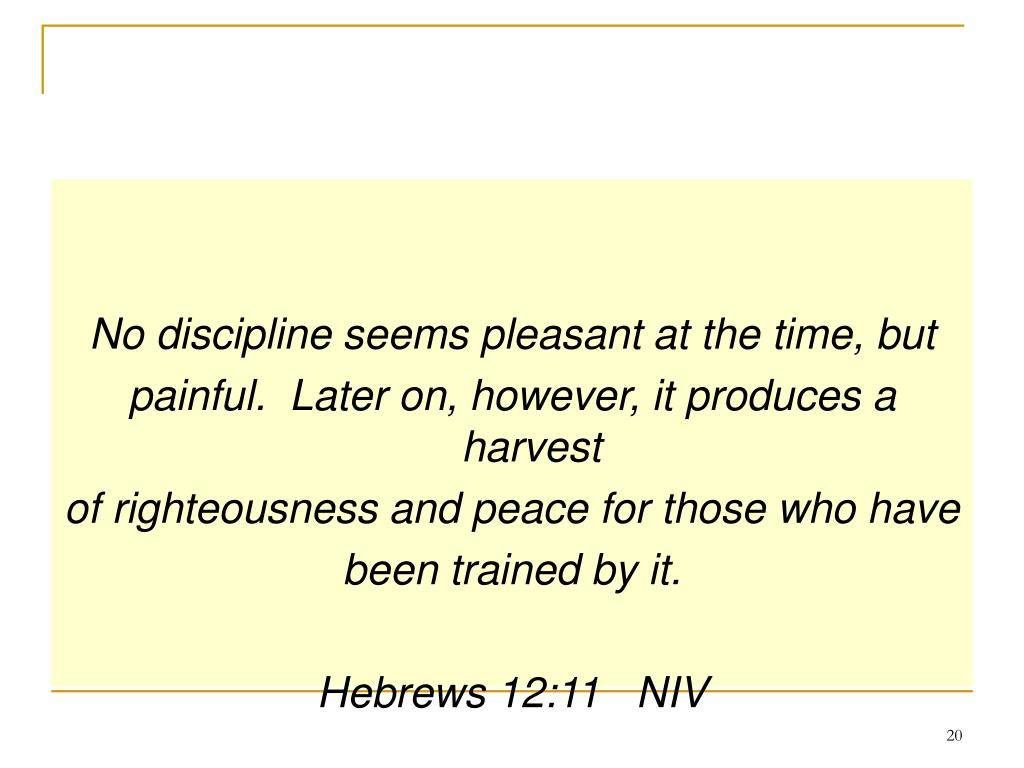 No discipline seems pleasant at the time, but