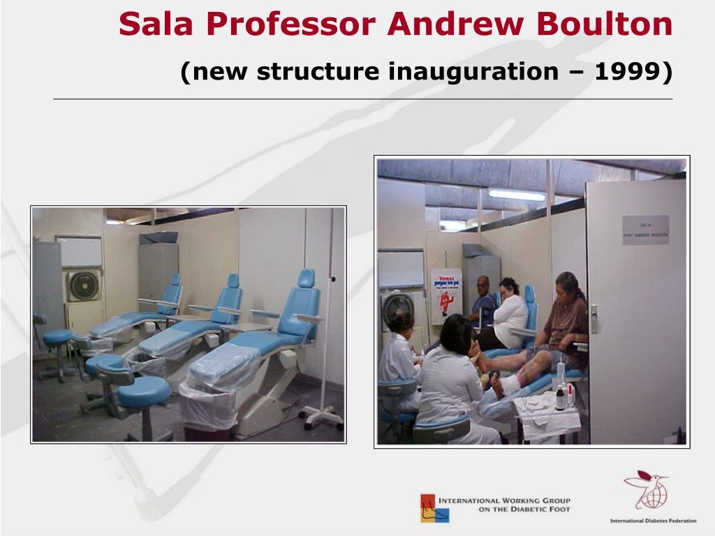 Sala Professor Andrew Boulton