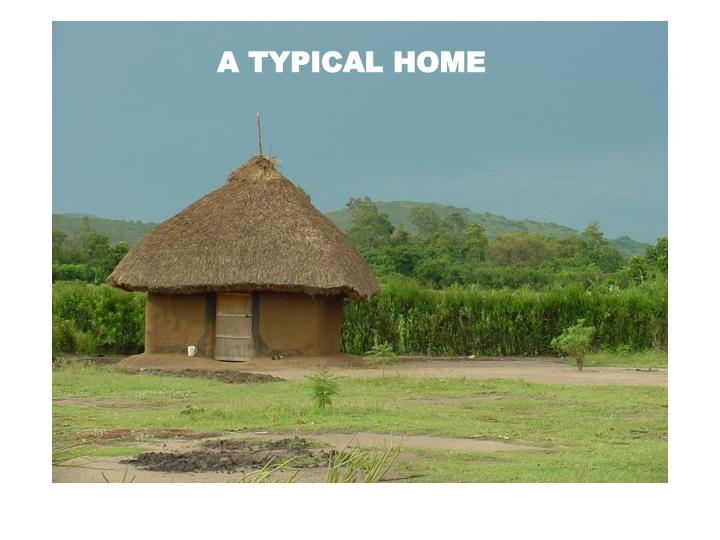 A TYPICAL HOME