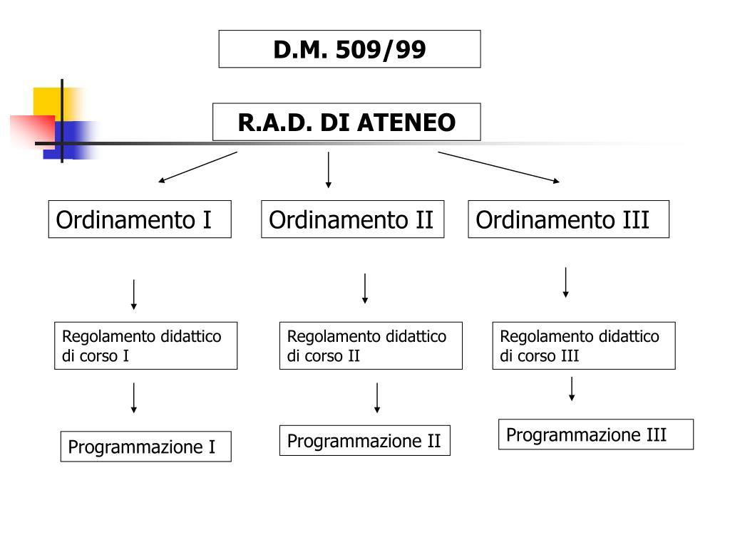 D.M. 509/99