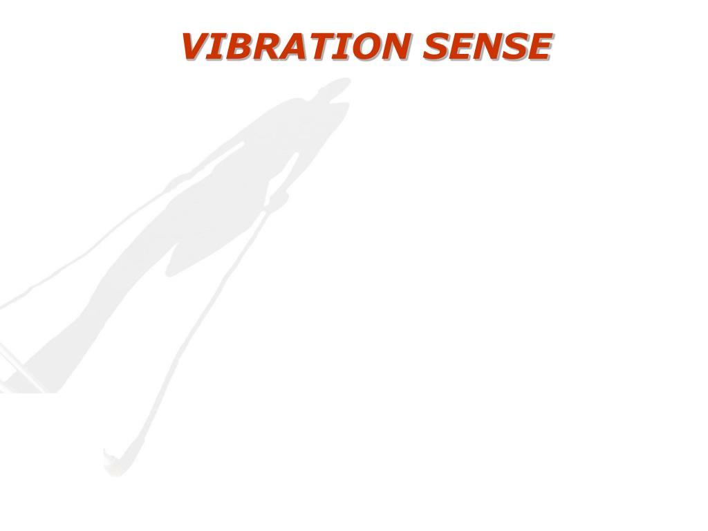 VIBRATION SENSE
