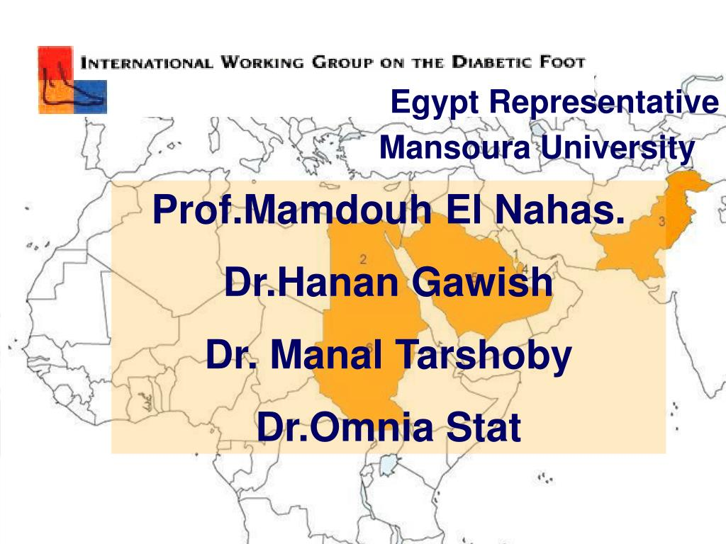 Egypt Representative
