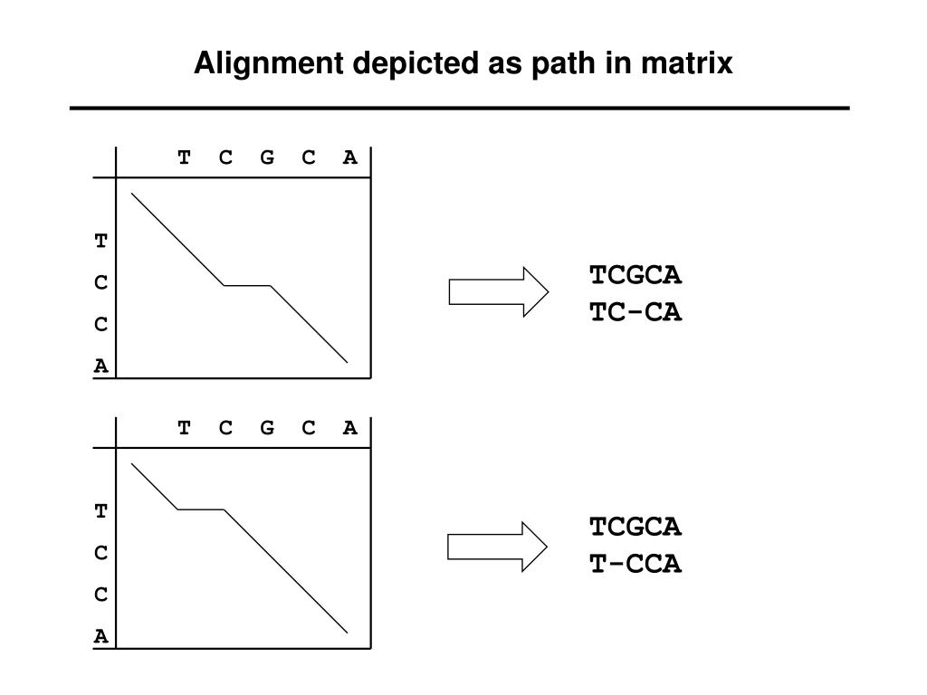 Alignment depicted as path in matrix