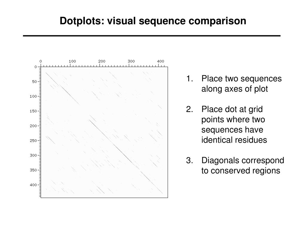Dotplots: visual sequence comparison