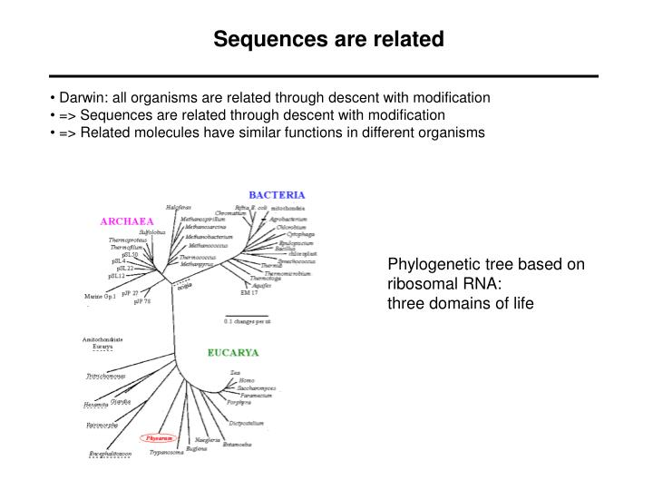 Sequences are related