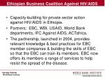 ethiopian business coalition against hiv aids