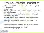 program branching termination
