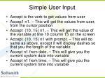 simple user input