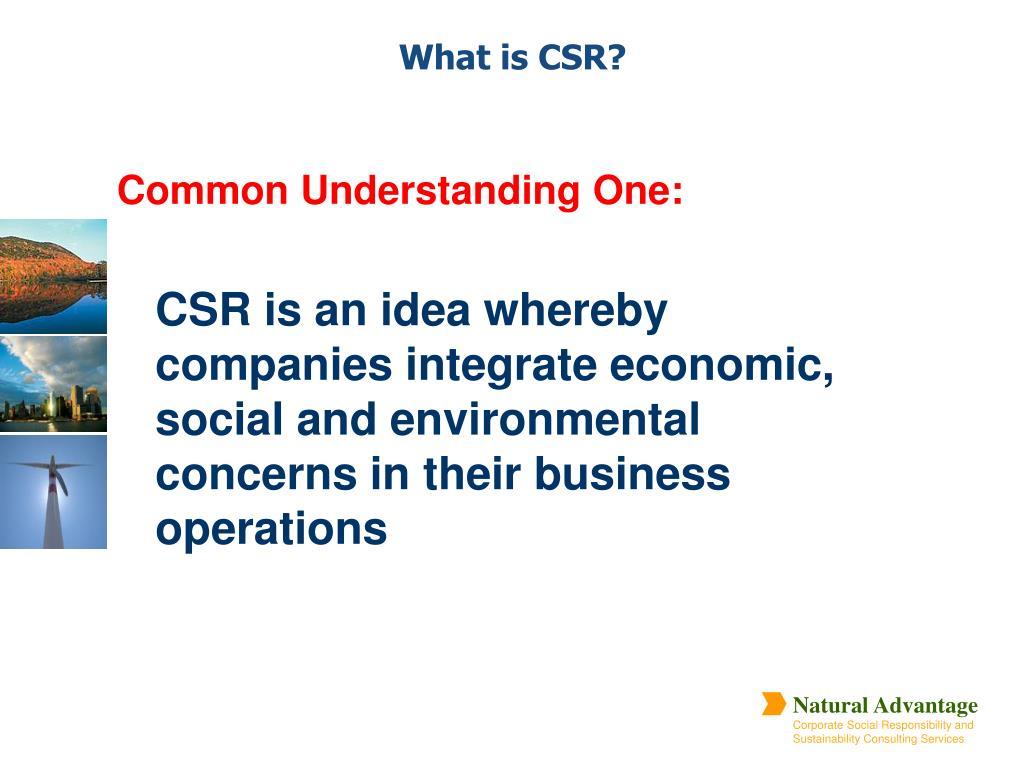 Common Understanding One: