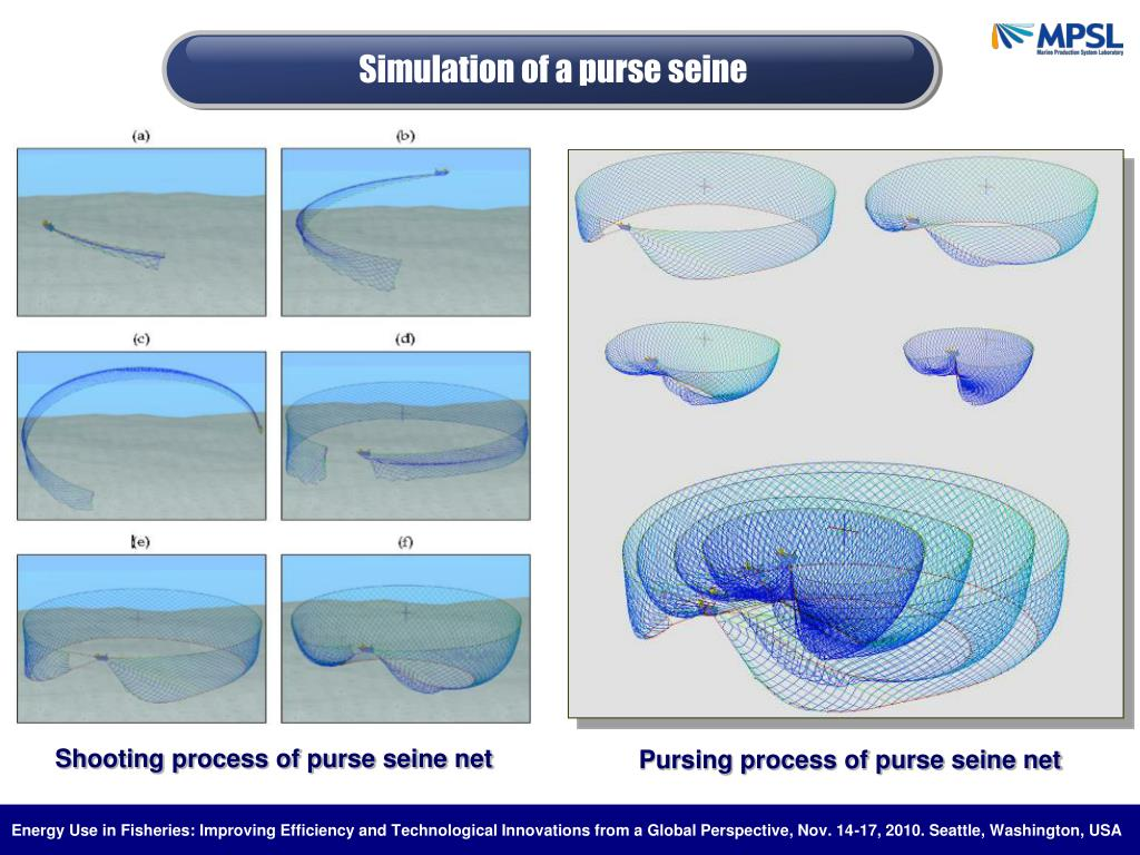 Simulation of a purse seine
