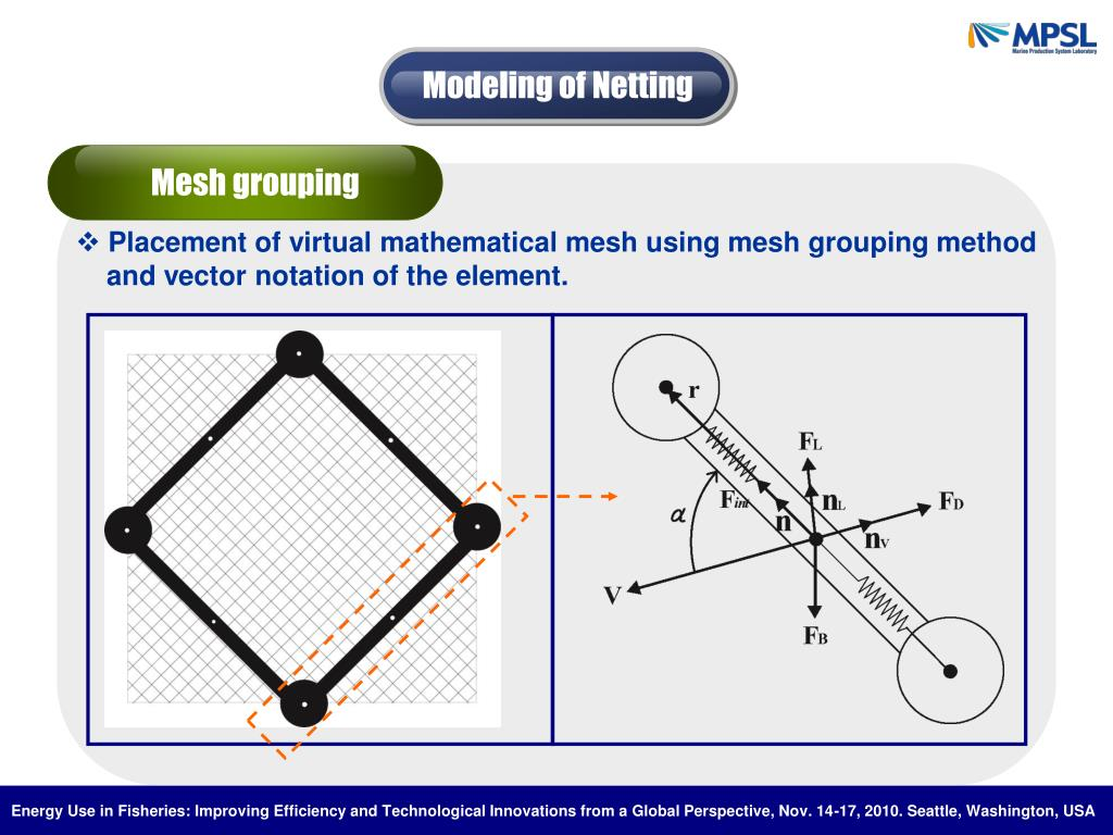 Modeling of Netting