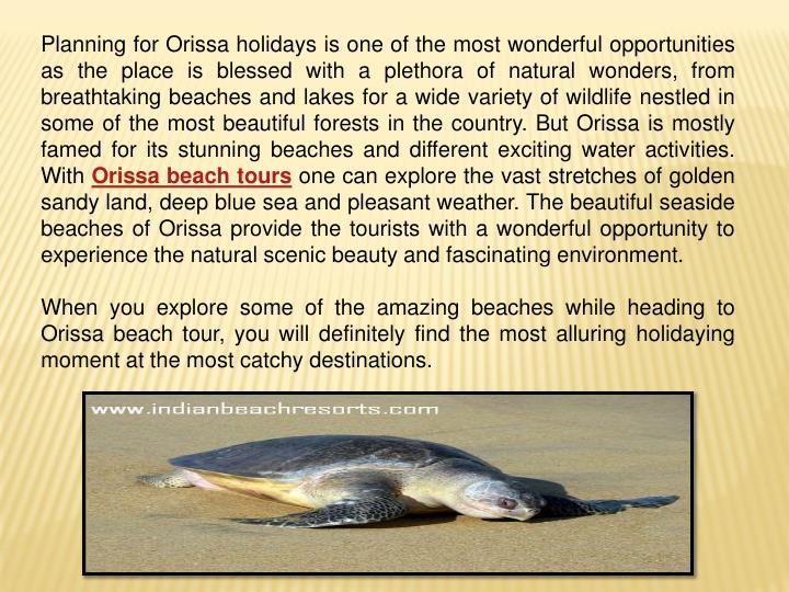 Planning for Orissa holidays is one of the most wonderful opportunities as the place is blessed with...