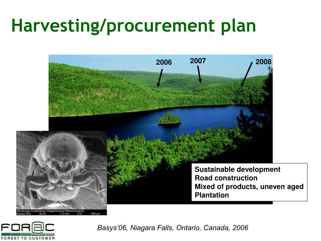 Harvesting/procurement plan
