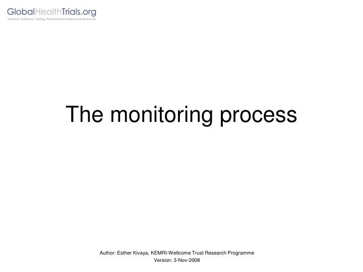 The monitoring process l.jpg