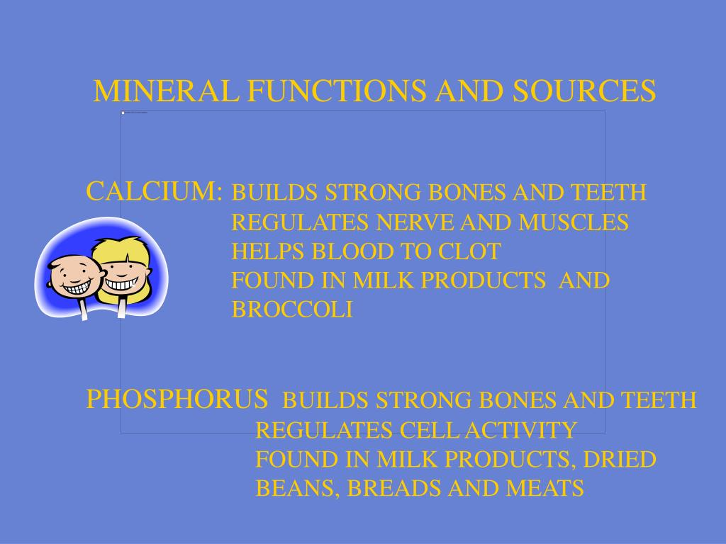 MINERAL FUNCTIONS AND SOURCES
