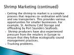 shrimp marketing continued