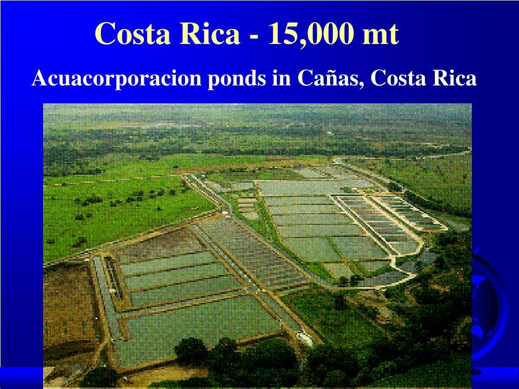Costa Rica - 15,000 mt