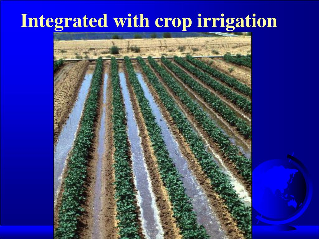 Integrated with crop irrigation