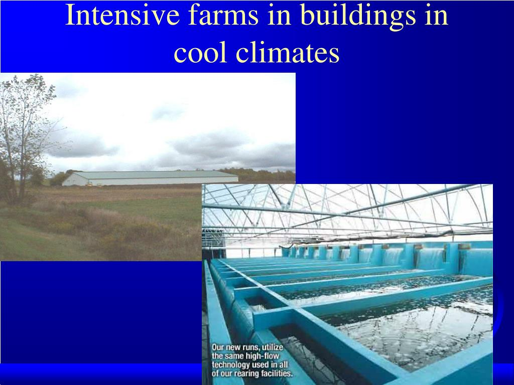 Intensive farms in buildings in cool climates